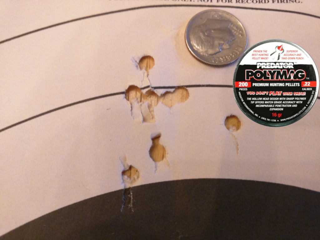 Predator Polymag Standards, 50 yards, 10 shots. Still an acceptable pellet for small game. If you need the extra penetration and expansion, these are still a viable choice for under 50 yards.